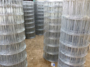 Grassland Fence (professional manufacturer, best price and good quality) pictures & photos