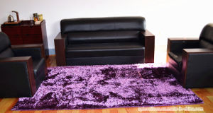 High Quality Polyester Anti-Slip Hall/Living Room Rubber Carpet Rug pictures & photos