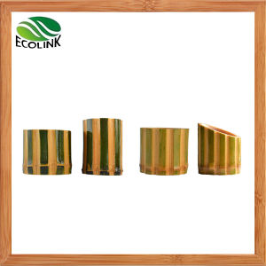 Natural Bamboo Pot/ Bamboo Succulent Plant Pot pictures & photos