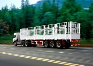 Low Price Cargo Semi-Trailer for 10-100 Tons