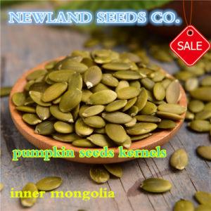 The Best Shine Skin Pumpkin Seeds Kernels for Human Consumption