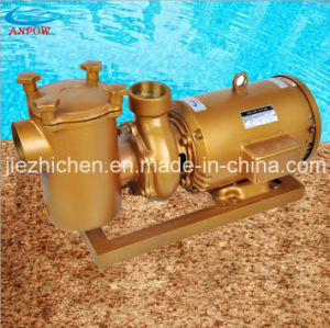 Swimming Pool Filter Water Swimming Pool Pump pictures & photos