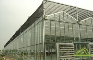 Venlo Glass Greenhouse Fv108 pictures & photos