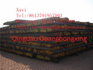 Steel Rebar, Deformed Steel Bar, Rod for Construction/Concrete/Building pictures & photos