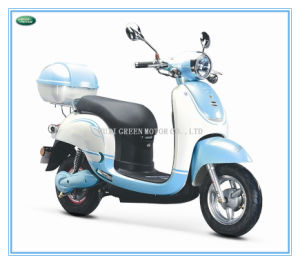 600W Brushless Electric Scooter, Electric Bike,