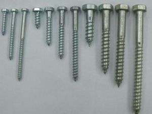 2016 Hex Head Wood Screw with Good Quality pictures & photos