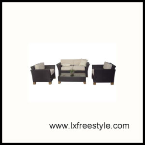 Poly Rattan Furniture with SGS Certification (SF-017)
