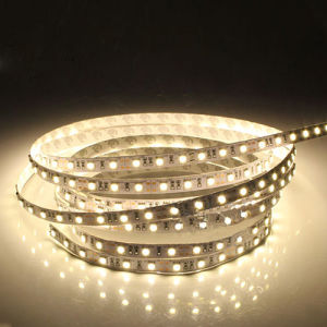 SMD3528 IP68 Cct Adjustable Water Proof LED Stripe for Outdoor Decoration 120 LEDs pictures & photos