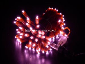 RGB LED Christmas Injected Glue String Light Decorations with Ce pictures & photos
