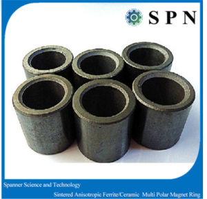Ferrite Isotropic Multipoles for Stepping Motor pictures & photos
