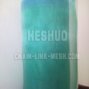 Plastic Window Screen Mesh for Southeast Asia pictures & photos