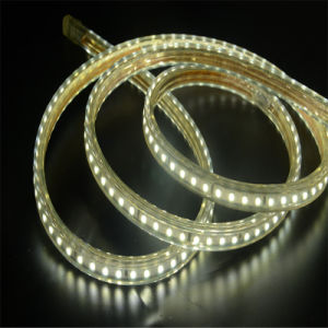 4W/M IP67 Waterproof SMD3528 220V High Volt LED Strip pictures & photos