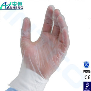 Medium Powder Free Disposable Vinyl Gloves for Foodservice pictures & photos