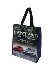 PP Woven Shopping Bag Laminated pictures & photos