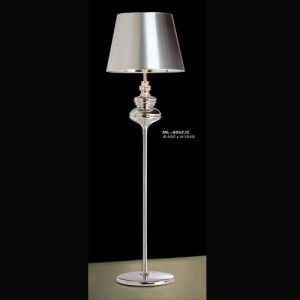 Decorative Floor Lamp (ML-8052/C) pictures & photos