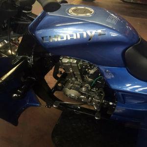 Factroy Gasoline Three Wheel Motorcycle /Cargo Trike/3 Wheeler Car /Motorbike pictures & photos