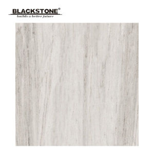 Light Grey Porcelain Rusric Tiles for House Decoration (660401NA3) pictures & photos