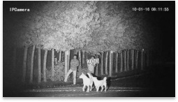 Night 400m IR Scanner Multi Application Laser IP Camera pictures & photos