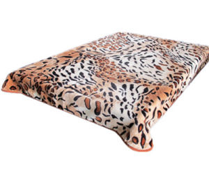 Hot Sale 100% Polyester Raschel Blanket Sr-B170305-14 Soft Printed Mink Blanket pictures & photos