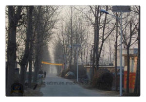 3m-6m Solar Street Lamp with LED/High Press Soduim pictures & photos