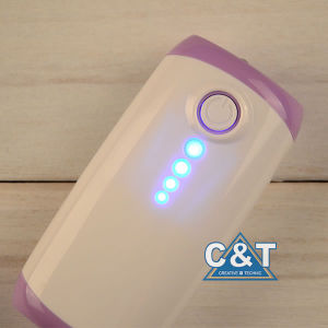 Lithium-Ion 5600 Portable Power Bank USB Battery Charger pictures & photos