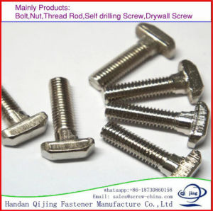 T Head Bolt with Nut pictures & photos