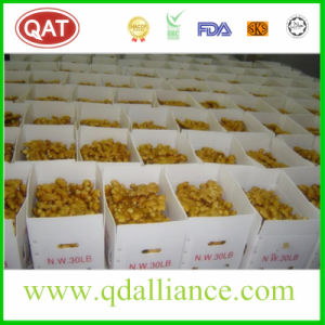 Organic Air Dry Ginger Exporting to Us pictures & photos