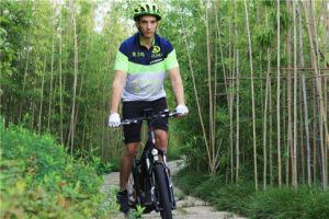 Sparta E Bike, Electric Mountain Bike pictures & photos