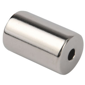 Segment Permanent Neodymium Magnet for Motors pictures & photos