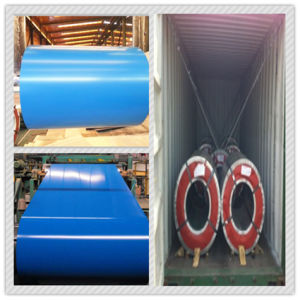 Fixed PPGI Steel Coils for Building Material