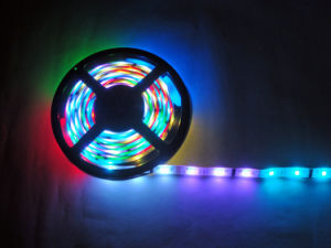 12 Volt LED Light Strips pictures & photos