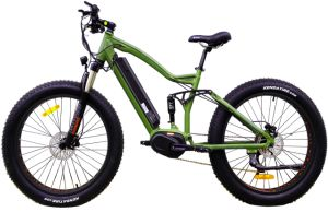 Two Suspension Fork Fat Tire Electric Bike pictures & photos