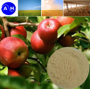 Zymolysis Amino Acid Powder 80% for Organic Fertilizer Organic Agriculture pictures & photos