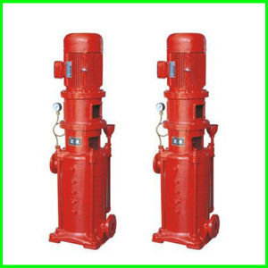 Portable Fire Pump with Fixation pictures & photos