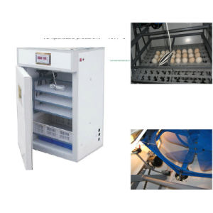 Incubators for Hatching Eggs