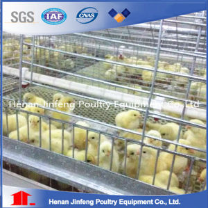 High Quality Easy Clean Automatic Chicken Pullet Cage pictures & photos