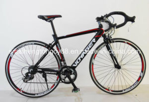 700cc Running Bike/Road Bike for Hot Sale pictures & photos