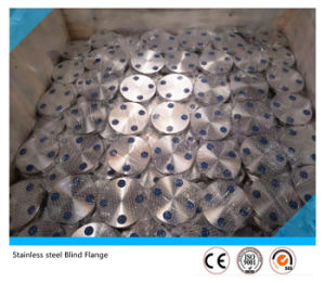 Duplex Stainless Steel Forged Blind S31803 Flange pictures & photos