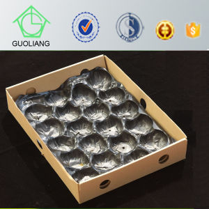 Popular Wholesale Australia Vacuum Formed Disposable Fruit Box Inserts Tray Liner for Mango pictures & photos