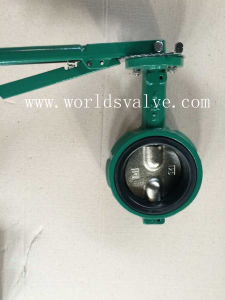 Demco Wafer Butterfly Valve (WDS) pictures & photos
