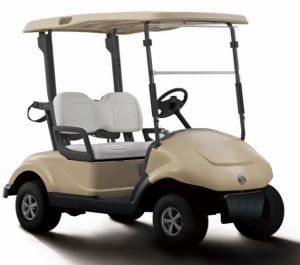 Cheap 2 Seater Electric Golf Cart with Trojan Battery From Dongfeng Motor on Sale pictures & photos