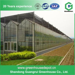 Beat Price Polycarbonate Sheet Green House PC Greenhouse pictures & photos
