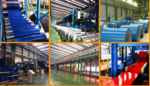 Hot Selling PPGI Color Coated Steel Coil From China Supplier