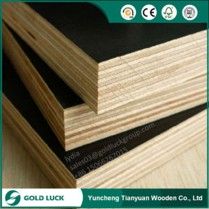 Film Faced Construction Formwork Plywood with Customized Logo pictures & photos