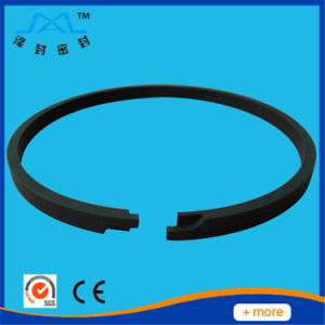 Customized Iron Piston Ring for Air Compressor