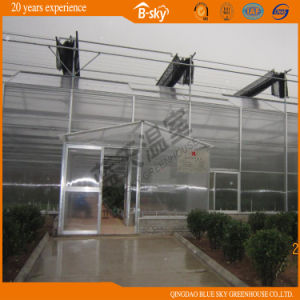 High Output Multi-Span Venlo Type Glass Greenhouse pictures & photos