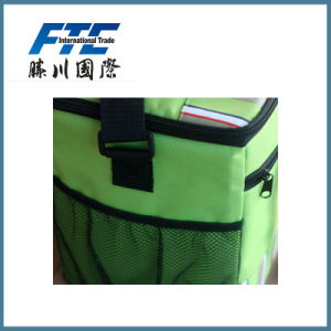 Cooler Bag Insulated Bag Ice Bag Lunch Bag pictures & photos