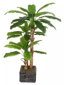 Best Selling Artifficial Plants of Banana Tree of Gu-Banana-FF-23-3 pictures & photos
