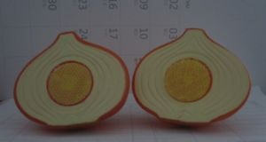 Plastic Onion Education Toy