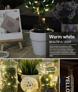 DC 12V 1A 100LED Copper Wire String Lights pictures & photos